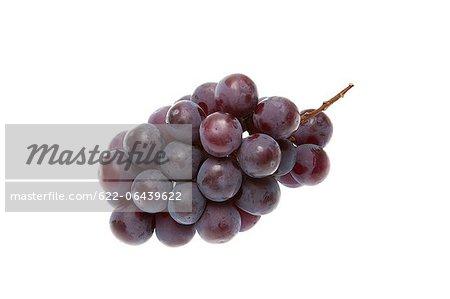 Grape against white background