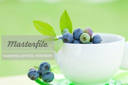 Blaubeeren mit Blättern in einer weißen Tasse hautnah