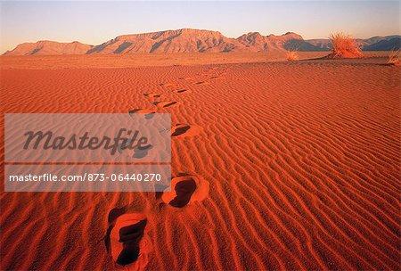 Empreintes dans le sable Pella, Northern Cape en Afrique du Sud
