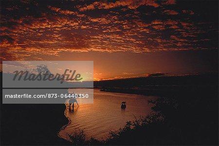 Sunset over Chobe River Botswana, South Africa