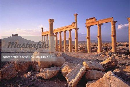 Sandstone Columns in Desert Palmyra Ruins, Syria