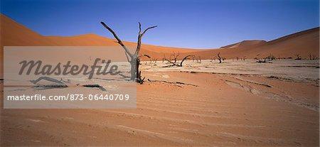 Sossusvlei, Namib Desert Namibia Africa