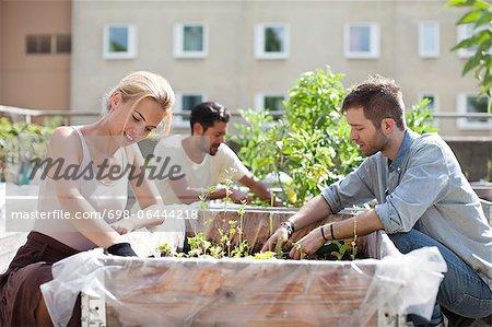 Junges Paar mit Mann im Hintergrund am städtischen Garten Gartenarbeit