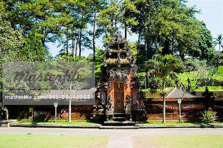 Beauitfully decorated Balinese door at Pura Tirta Empul Hindu Temple, Tampaksiring, Bali, Indonesia, Southeast Asia, Asia