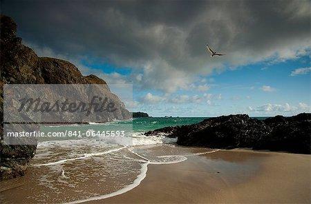 Rough mer Kynance Cove sur la péninsule de Lizard, Cornwall, Angleterre, Royaume-Uni, Europe