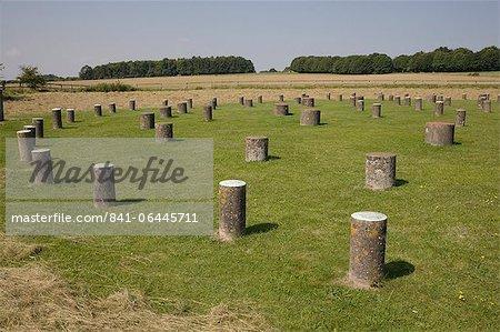 Woodhenge, showing circular design, Amesbury, Wiltshire, England, United Kingdom, Europe