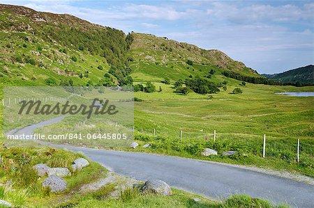 Straße in der Nähe von Blea Tarn, Lake District-Nationalpark, Cumbria, England, Vereinigtes Königreich, Europa