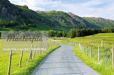 Rabe, Kletterfelsen, Langdale Pikes, Lake District-Nationalpark, Cumbria, England, Vereinigtes Königreich, Europa