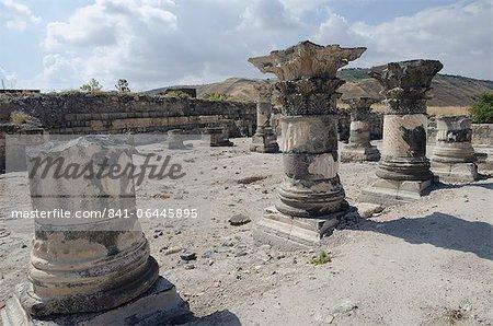 Hippopotames Sussita site archéologique, des hauteurs du Golan, Israël, Moyen-Orient
