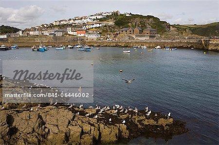 Mevagissey, St. Austell, Cornwall, Angleterre, Royaume-Uni, Europe