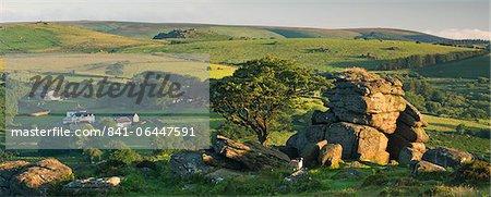 Dartmoor moorland and countryside in summer time, Saddle Tor, Dartmoor, Devon, England, United Kingdom, Europe