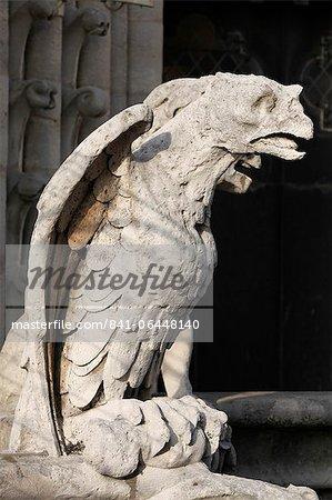 Gargouille de la cathédrale Notre-Dame, Paris, France, Europe