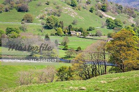Countryside near Burnsall, Wharfedale, Yorkshire Dales, Yorkshire, England, United Kingdom, Europe