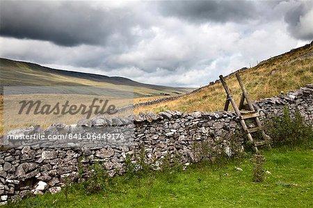 Stile pierre sèche de mur et échelle à Twistelon cicatrice près de Ingleton, Yorkshire Dales, North Yorkshire, Yorkshire, Angleterre, Royaume-Uni, Europe