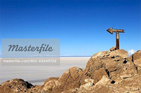 Cactus arrow on Isla de los Pescadores and the salt flats, Salar de Uyuni, Southwest Highlands, Bolivia, South America