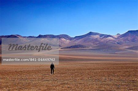 Desert in the Avaroa Andean Fauna National Reserve, Bolivia, South America