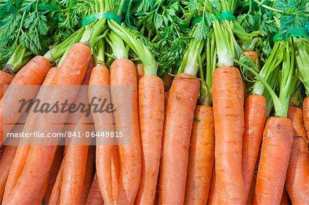 Karotten zum Verkauf auf dem Markt am Sonntagmorgen, Pollenca, Tramuntana, Mallorca, Balearen, Spanien, Europa