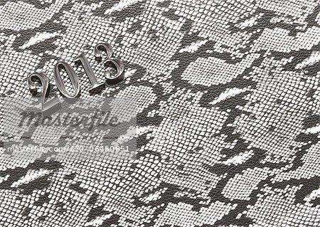 2013 image, Snake skin pattern