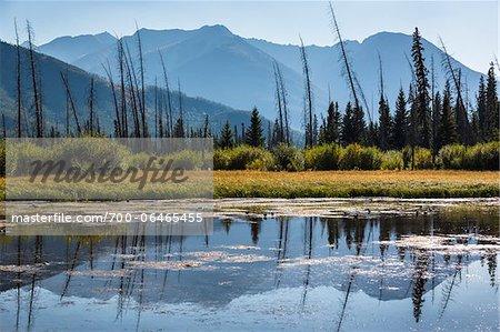 Vermilion Lakes near Banff, Banff National Park, Alberta, Canada