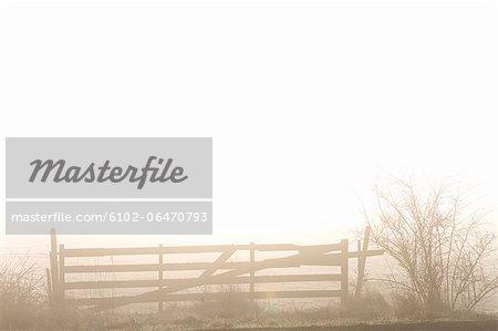 A gate in a hazy landscape, Sweden.