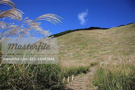 Grassland at Soni Plateau, Nara Prefecture