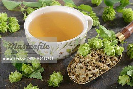 Hops tea and hop cones