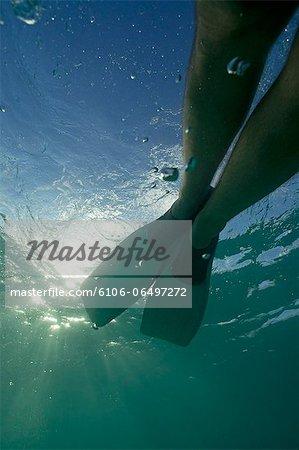 Snorkeller legs with flippers underwater