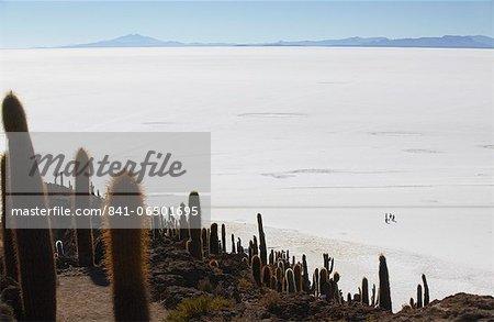 View of people walking on Salar de Uyuni (Salt Flats of Uyuni) from Isla del Pescado (Fish Island), Potosi Department, Bolivia, South America