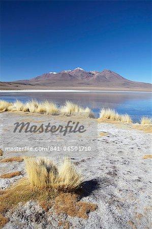 Landscape of Laguna Canapa on Altiplano, Potosi Department, Bolivia, South America