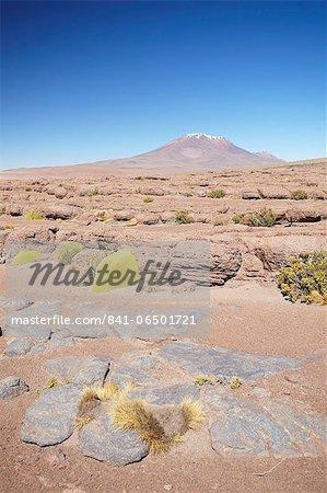 Landscape of Altiplano, Potosi Department, Bolivia, South America