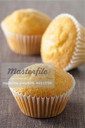 Close-up of Plain Cupcakes, Studio Shot