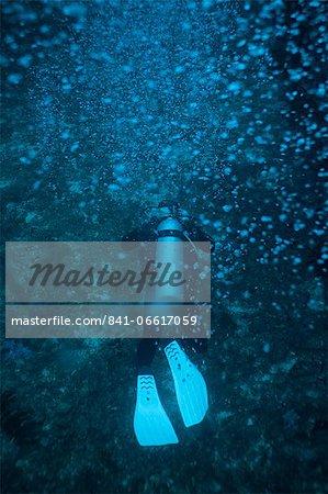 Scuba diver underwater, Thailand, Andaman Sea, Indian Ocean, Asia