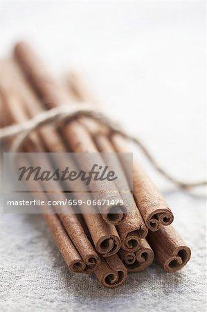 Cinnamon sticks, tied together