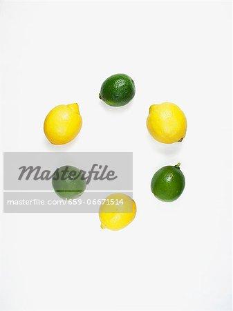 A circle of limes and lemons