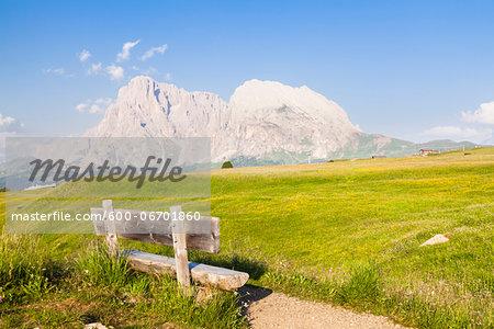 Bench by Alpine Meadow, Seiser Alm, Sassolungo and Plattkofel Mountain, Dolomites, South Tyrol, Italy