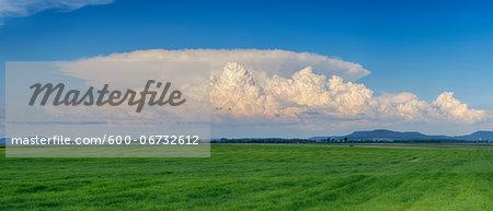 Thundercloud (cumulonimbus) over green field. Bavaria, Germany.