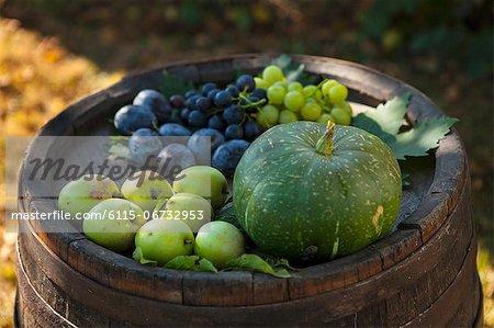Several Fruits On Wooden Barrel, Croatia, Slavonia, Europe