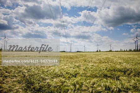Wind farm, Dessau, Germany, Europe
