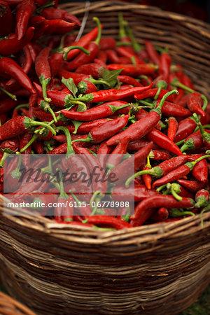 Red Chilis In Basket, Baranja, Croatia, Europe