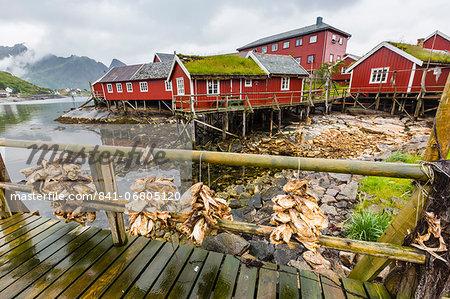 Norwegian cod fishing town of Reine, Lofoton Islands, Norway, Scandinavia, Europe
