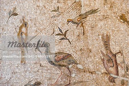 Mosaic of birds and flowers from Daphne (Harbiye), 2nd century AD, Hatay Archaeology Museum, Antioch, Hatay province, Southwest Turkey, Anatolia, Turkey, Asia Minor, Eurasia