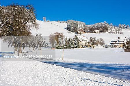 Black Forest farmhouses in winter near Sankt Peter (Saint Peter), Black Forest, Baden-Wurttemberg, Germany, Europe