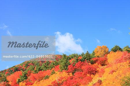 Autumn at Tengu garden, Fukushima Prefecture