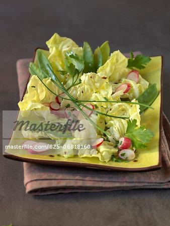 Lettuce,radish,sugar pea and chive salad