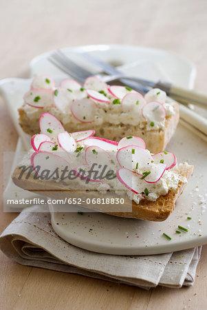 Cottage cheese and radish Bruschetta