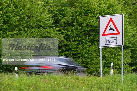 Danger sign, Wild animals crossing, Spessart, Bavaria, Germany, Europe
