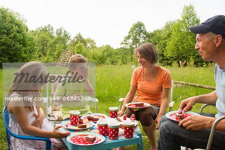Family with two children enjoying birthday picnic