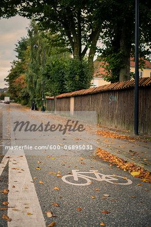 Bicycle Path in Autumn, Copenhagen, Denmark