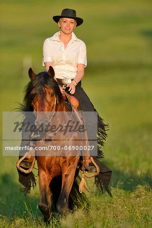 Portrait of woman riding a Connemara stallion on a meadow, Germany