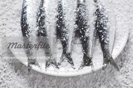 Sardines covered in salt